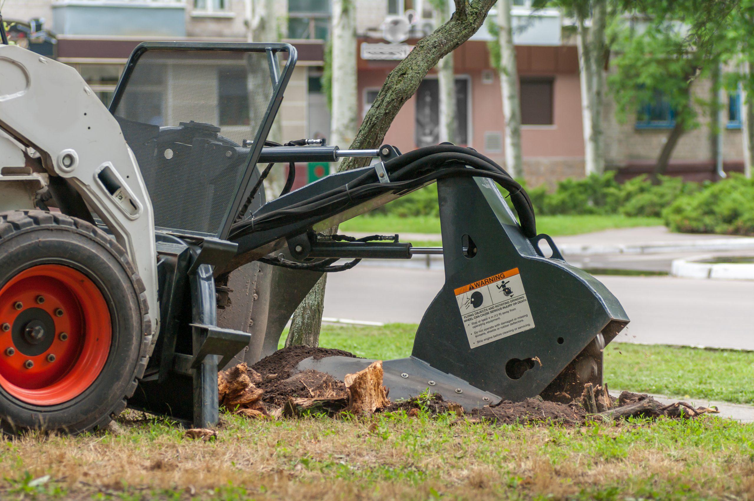 tulsa stump grinding grinder Oklahoma stumps removed