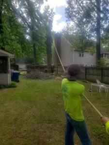tree removal tree service claremore oklahoma claremore ok